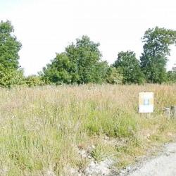 Vente Terrain Bourg-des-Comptes (35890)