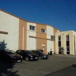 Location Local d'activités Pessac 2300 m²