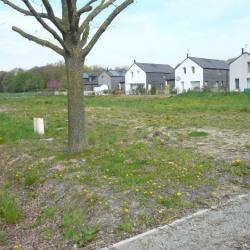 Vente Terrain Baisieux 570 m²