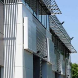 Vente Local d'activités Chanteloup-en-Brie 12850 m²