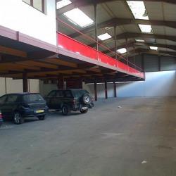 Vente Local d'activités Ozoir-la-Ferrière 1240 m²