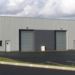 Location Entrepôt Verson 300 m²