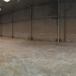 Location Local d'activités Brignais 800 m²