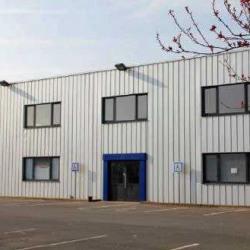 Location Bureau Roncq 440 m²