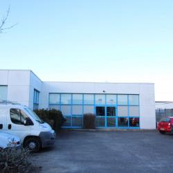 Location Local d'activités Mérignac 300 m²