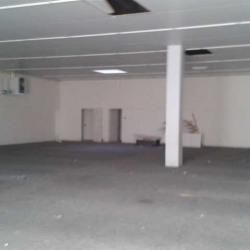 Location Entrepôt La Ville-du-Bois 425 m²