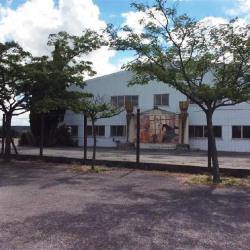 Vente Entrepôt Castelnaudary 3440 m²