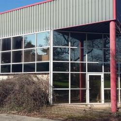 Vente Local d'activités Lissieu 1500 m²
