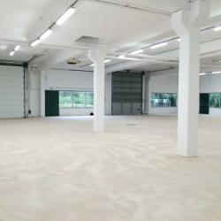Vente Local d'activités Villepinte 2738 m²