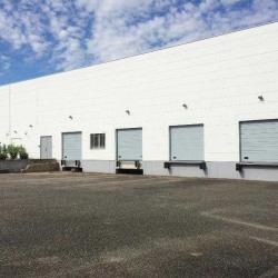 Location Entrepôt Mundolsheim 900 m²