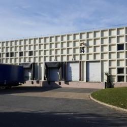 Vente Entrepôt Croissy-Beaubourg (77183)