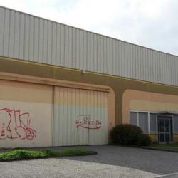 Location Local d'activités Ramonville-Saint-Agne 700 m²