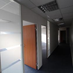 Location Bureau Fontenay-sous-Bois 175 m²