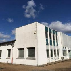 Vente Local d'activités Ingré 4597 m²
