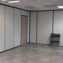 Location Bureau Cran-Gevrier 33 m²