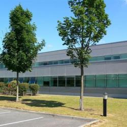 Location Entrepôt Tremblay-en-France 6266 m²