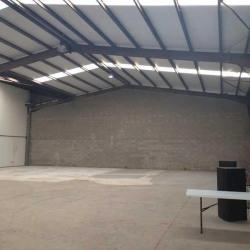 Location Local d'activités Bondoufle 1627 m²