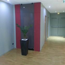 Location Bureau Torcy 274 m²