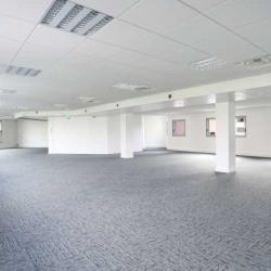 Location Bureau Suresnes 902 m²