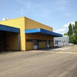 Vente Local d'activités Longvic 4580 m²