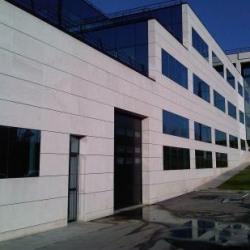 Location Local d'activités Bry-sur-Marne 4252 m²
