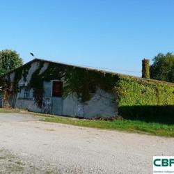 Vente Local d'activités Argenton-sur-Creuse 671 m²