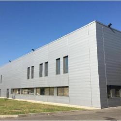 Vente Local d'activités Vaulx-en-Velin 0 m²
