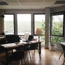Vente Local d'activités Noisy-le-Grand 4829 m²