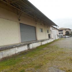 Location Local d'activités Toulouse (31200)