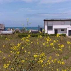 Vente Terrain Santec 642 m²