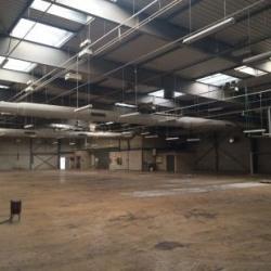 Location Local d'activités Villejust 8266 m²