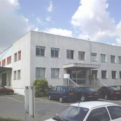 Vente Bureau Chennevières-sur-Marne (94430)