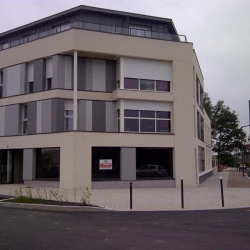 Vente Local commercial Avrillé (49240)