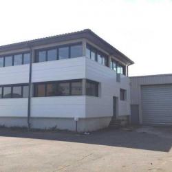 Location Local d'activités Toulouse 290 m²