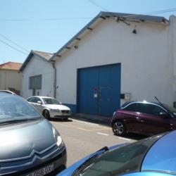 Location Local d'activités Narbonne 263 m²
