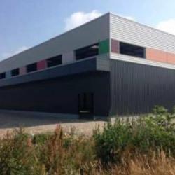 Location Local d'activités Miribel 1512 m²