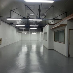 Location Local d'activités Villeparisis 390 m²