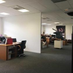 Location Bureau Paris 8ème 370 m²