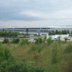 Vente Entrepôt Brie-Comte-Robert 7364 m²