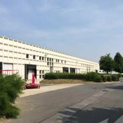 Vente Local d'activités Croissy-Beaubourg 1419 m²