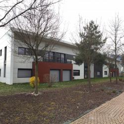 Location Bureau Saint-Genis-Pouilly 253 m²