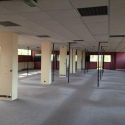 Vente Local d'activités Clamart 1505 m²