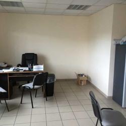 Location Local d'activités Chassieu 1033 m²