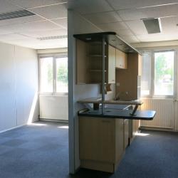 Location Bureau Bourgoin-Jallieu 195 m²