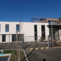 Location Local d'activités Saint-Romain-en-Gal 184 m²