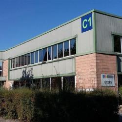 Vente Local d'activités Saint-Thibault-des-Vignes (77400)