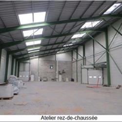Vente Local d'activités Aillas 1000 m²
