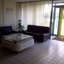 Vente Local d'activités Collégien 7882 m²