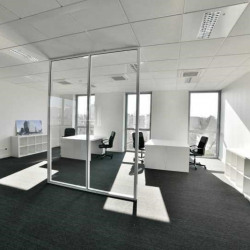 Vente Bureau Châtenay-Malabry (92290)