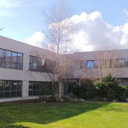 Location Bureau Magny-le-Hongre 154 m²